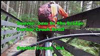 Beaver Dam to the Bridge, Porter Creek Trail,...