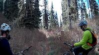 Hall Lake Trail