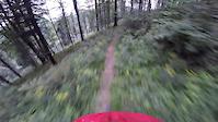Autumn Can Be Fun - Przehyba Trail