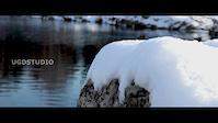 Winter Shreding