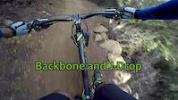 SM Mountains backbone and J-Drop