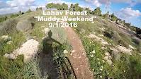 Muddy Lahav