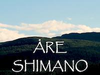Shimano trail