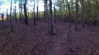 fun local trail near Raleigh