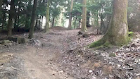 Forest of Dean sesh