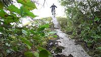 A few Squamish Trails