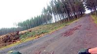 Fox Launch trail