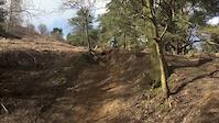 Surrey Hills: Northern Monkey/Thick & Creamy