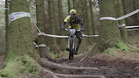 PMBA Grizedale crashes-ROOTS!
