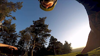 How to faceplant a tree (POV)