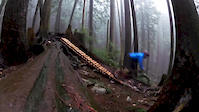 Mt. Fromme - Espresso