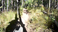 Technical Switchback on Colorado Trail