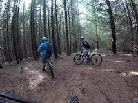 Crieff  trails