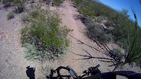 Some Desperado Trail