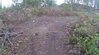 Ridge runner trails