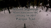 Pangor in the snow - Mount Seymour Jan 2017