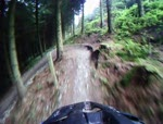 llandegla black head cam