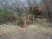 McAllister park