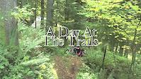 Big Tree Bikes November Team Video