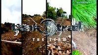 Tank Trail The Team