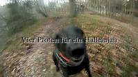 Freeride Traildog