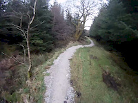Circle Road at Gisburn Forest