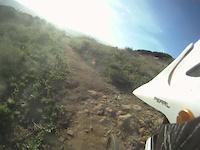 Hummingbird Trail Sprint