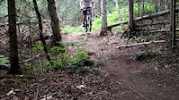 Shredding Cottage Trails