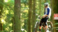 Big Tree | Big Bike