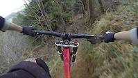 Tavi Woodlands - Round 3 2014 - The Man Track