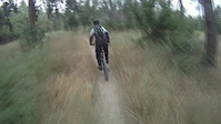 Single Tracks for two