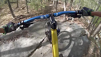 DH at Lincoln Woods