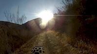 Bark Park Trail - Rear View