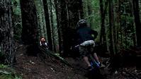 Damp Trails