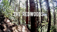 Rotorua Redwoods - Create Breathing Space Trailer