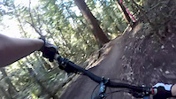 Demo Forest Flow Trail 1-6 full run