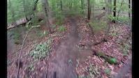 Eagle Trail Descent - Ellicottville Mountain...
