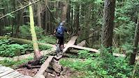 Treasure Trail skinny to drop
