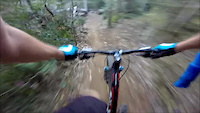 WILD PIG-LOCAL ENDURO TRAIL