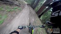 Catwalk Trail - Mt. Ashland, OR