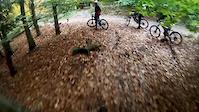 Forest of Dean    Ski Run DH