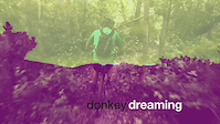 donkey dreaming