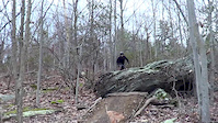 Frederick Watershed Drop Trails