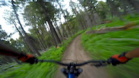 Leverich Canyon Downhill