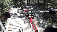 Mammoth with a Gimbal
