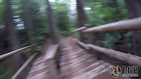 Galbraith Mountain Blue Trails - Bellingham, WA