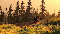Arbutus Racks - Mount Washington