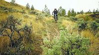 Luckynugget - Tyler Hanghofer rides Gauntlet