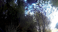 Descend Hamsterley Pinball 4/10/14
