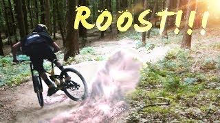 WE NEED MORE DUST! - Roostin Berms with Lukas...